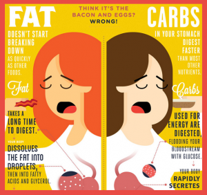 Depiction of fat vs carbs and how lipotropic injections for weight loss help with dieting.